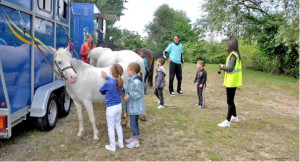 animation poney peuple parc de l'herbe