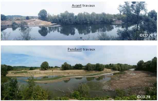 Queue de l'étang de La Galiotte